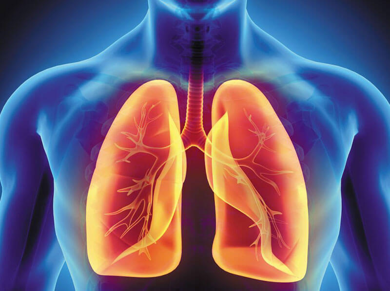 5 Ways to Keep Your Lungs Healthy – Blue Echo